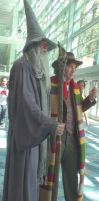 Wizard Gandalf and Doctor Who at Wondercon 2013 by trivto