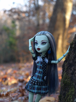 .:Leaf-fall:. by ALittleRiddle