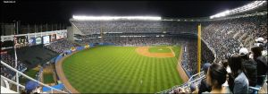 Go Yankees by Sadocles