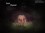 They say that love is forever by XxIrinaxX