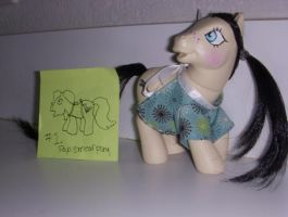 MLP Custom Gag Gift Pap Smear Pony by colorscapesart