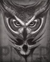Owl and Skull by RodgerPister