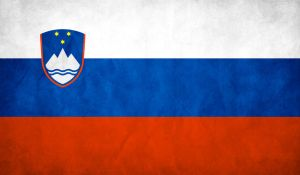 Slovenia Flag Grunge by think0