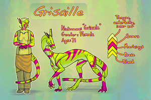 Grisaille Reference Sheet by Kauriana
