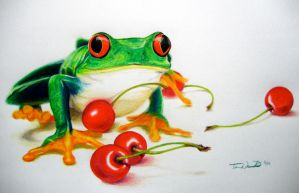 Frog and Cherries by spinizuey