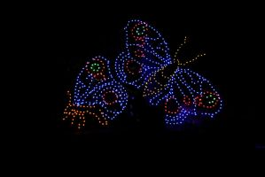 Holiday Lights2 by olearysfunphotos