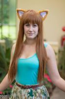 Holo - Spice and Wolf by Rose-Cosplay