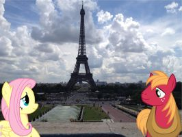 Big Mac and Fluttershy at France by Phi1997