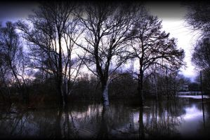 Trees and flood by Toun57