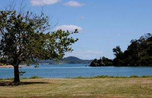 Pataua Estuary 4 by Applemac12