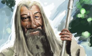 Gandalf Characiture by Nico-Illustration