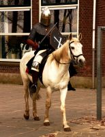 Mounted knight at school by Dewfooter