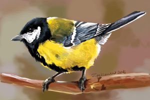 Great tit by TigaLioness