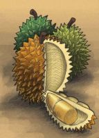 durian anyone? by arf