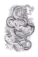Chinese dragon by ca5per