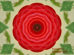 Fractal Rose for Kitty by ancient--one