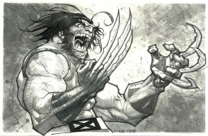 Wolverine/inks/watercolor greytones by rogercruz