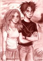 Harry and Hermione by the lake by Yamatoking