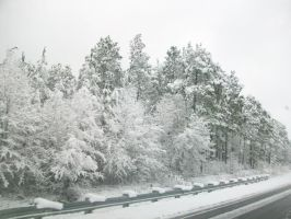 Snow Down the Highway by anelphia