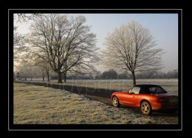 mazda in the frost by sandyprints