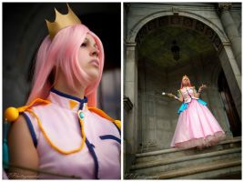 Revolutionary Girl Utena: Dawn Of The Revolution by BlackRoseMikage