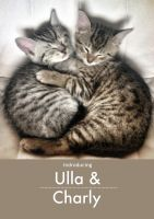 Ulla and Charly by Nicschi