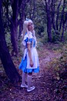 Alice In Wonderland 4 by Sefora-san