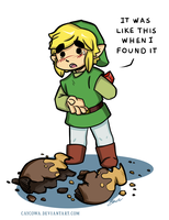 Legend of Zelda - It was like this when I found it by caycowa