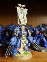 Professional paint Cato Sicarius Limited Edition by DeathShadowSun