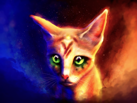 NebulaCat ColorStudy by Foxeus