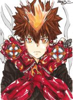 tsuna's fire by emukcs