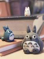 Totoro 3 by coralfg