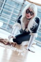 #9 Black Cat by CiriCosplay by Mantikoa