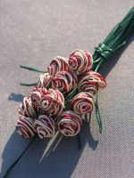 Candy Cane Bouquet of Roses by reynaldomolinawire
