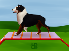 Hazel's Bruse: NAK's Embracing the Fall Agility by PaintedCricket