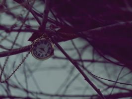 Alice in Winterland by SarahCleary