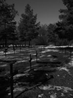 grave yard by DR13agoslav