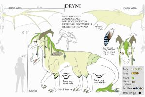Dryne Reference Sheet by BlackAngelFeathers
