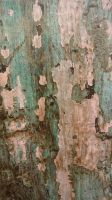 Wood Texture Stock 10 by Ox3ArtStock