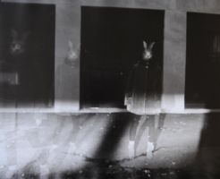 Three rabbits 2 by boisvemi
