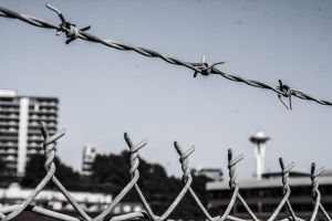 Barbed Wire by OcularInflux