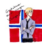 APH Norway B-day 2015 by AnnHolland