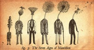 The Seven Ages of Mandelion by VonMonkey