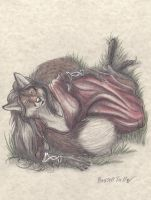 Commission: Anthro Fox Laying in Grass by RussellTuller