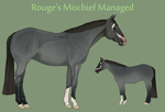 Rouge's Mischief Managed by theRyanna