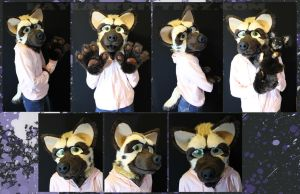 Riley Hyena by BlueWolfCheetah