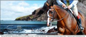 Horse pic - Bay Ocean by Savellla