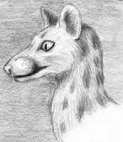 Portrait of a Genet by ksheridan