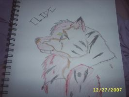 Clide by TheForgottenWolf