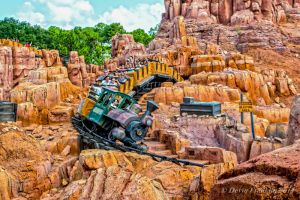 The Wildest Ride In The Wilderness by NY-Disney-fan1955
